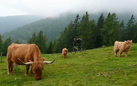 transtirol_09_06_11